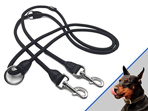 Profi Doppelleine - 280 cm, 4-fach verstellbar - robuste Nylon-Hundeleine mit Lederelementen - geeignet für 2 Hunde Test