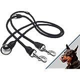 Profi Doppelleine - 280 cm lang, 4-fach verstellbar - hochwertige, robuste Nylon-Hundeleine mit Leder und verstärkten Nähten - ideal als Trainings- oder Langlaufleine - geeignet für zwei Hunde