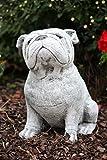 Steinfigur Bulldogge, massiver Steinguss, frost- und wetterfest bis -30°C