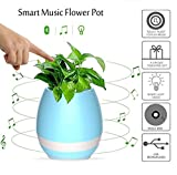 NNIUK Creative Smart Music Flowerpot, Playing Piano by Touching Real Plant , Wireless Bluetooth Speaker, Colorful Atmosphere Lights for Created a New Life Style,Blue