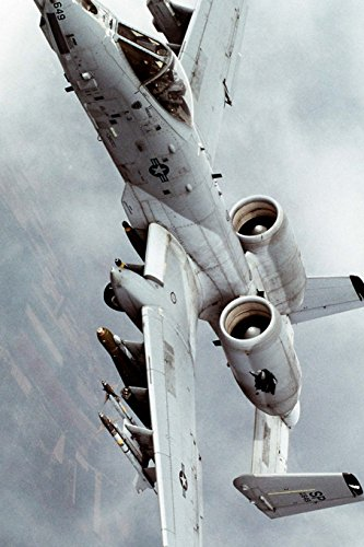 a-10-thunderbolt-ii-from-the-81st-fighter-squadron-us-airforce-blank-150-page-lined-journal-for-your