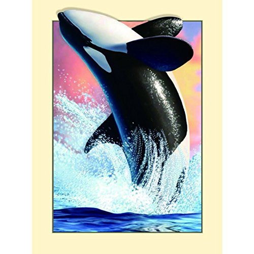 Wingbind New 5D Dolphin Partly Drill Diamond Painting,Dolphin Whale Pattern Diamond Painting for Kids Adults Beginners Home Decor Family Gifts-30*40
