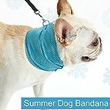 Bornbayb Schnellkühlung Haustier Bandana Hunde-Schal Bulldog Sommer Kühl Tuch Wrap Hundehalsband