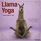 Llama Yoga 2020 Calendar