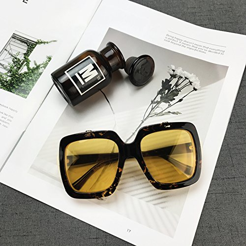 Sunyan Segel mit einem großen roten Net frame Brille Sonnenbrille Persönlichkeit flip quadratische Sonnenbrille Metrosexual Modelle erhebliche Gesicht, Leopard Print