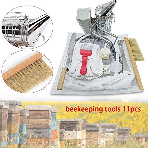 Relaxbx 11pcs Accesorios para Abejas apicultores Herramienta Conjunto Acero Inoxidable Abeja Colmena...