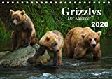 Grizzlys - Der Kalender CH-Version (Tischkalender 2020 DIN A5 quer): Grizzlybären - ein Fotoshooting in der Wildnis Alaskas (Geburtstagskalender, 14 Seiten ) (CALVENDO Tiere) - Max Steinwald