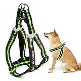 Aodoor Ultra-Soft Hundegeschirr Softgeschirr Brustgeschirr Hunde Geschirr Sicherheitsgeschirr L Grün