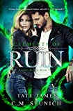 Elements of Ruin (Hijinks Harem Book 2)