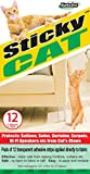 Sticky Cat Claws - Stop cats from clawing at your furniture!