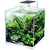 Kit Acuario 16 litros con Filtro + Pantalla LED ¡Envío ...
