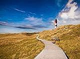 Fototapete Leuchtturm mit Holzweg 350cm Breit x 260cm Hoch Vlies Tapete Wandtapete - Tapete - Moderne Wanddeko - Wandbilder - Fotogeschenke - Wand Dekoration wandmotiv24