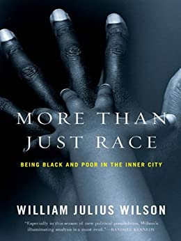 william julius wilson William julius wilson the truly disadvantaged the inner city, the underclass, and public policy second edition the university of chicago press chicago and london.