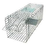 Gardigo 62360 - Jumbo Gabbia Trappola Pieghevole per la cattura di animali vivi | Trasportino per cani e gatti | 66 x 23 x 26 cm