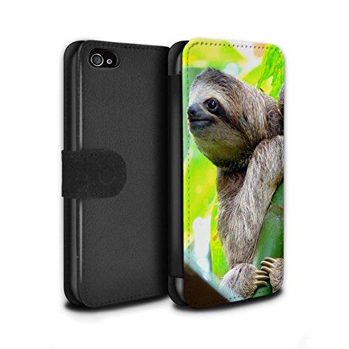 Stuff4® PU-Leder Hülle/Case/Tasche/Cover für Apple iPhone 4/4S / Faultier Muster/Wilde Tiere Kollektion (Muster Iphone 4s Fall)