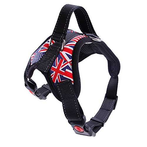 levliong Cool Soft Padded Dog Harness Adjustable No Pull Walking Training Assistance Chest