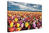 CANVAS IT UP Tulip Field auf Rahmen auf Leinwand, Drucke Blumen Bilder Poster Größe: 101,6x 76,2cm (101x 76cm)