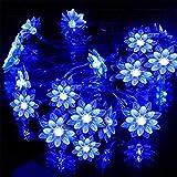 Jinxuny Luces solares de Cadena, 50 LED 7M Peach Ledertek Flor Lámpara Solar Potencia Cadena LED Luces de Hadas Jardín de guirnaldas Decoración de Navidad para jardín al Aire Libre Boda en casa Árbol