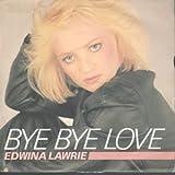 """BYE BYE LOVE 7 INCH (7"""" VINYL 45) UK SINGSONG 1983"""