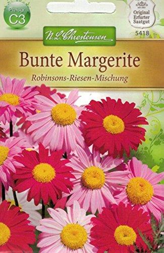 Chrestensen Bunte Margerite 'Robinson-Riesen-Mischung'