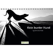Kein bunter Hund (Tischkalender immerwährend DIN A5 quer): Dosenöffner und Fellnase on Tour (Tischkalender, 14 Seiten) (CALVENDO Tiere) [Aug 22, 2013] Frick, Christine