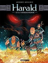Harald et le trésor d'Ignir, tome 1 par Matthieu Brivet