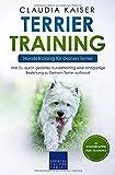 Terrier Training - Hundetraining für Deinen Terrier: Wie Du durch gezieltes Hundetraining eine einzigartige Beziehung zu Deinem Terrier aufbaust (Terrier Band, Band 2) - Claudia Kaiser