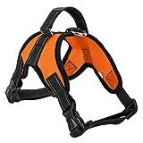 Yiiquanan Hundegeschirr Heavy Duty Mittlere/Große Hunde Geschirr Verstellbar Haustiere Vest Harness Ür Training Oder Walking (Orange#1, Asia M)
