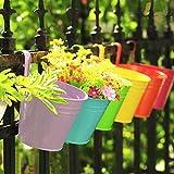10 Stück Hängetöpfe Metall Blumentöpfe Ø 10cm in 10 Farben, Metall Pflanztopf hängen am Balkon Fenster Zaun mit abnehmbarem Haken