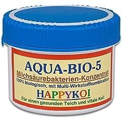 AQUA BIO 5 Milchsäurebakterien Pulver, probiotische Filterbakterien für Koiteich, Teich und Gartenteich, unterstützen die Nitrifizierung, bauen Algen und Schlamm ab. Der Rundum-Schutz für Koi und Teich. (500 ml)