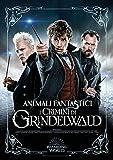Poster Amazon Animali Fantastici 2 ( Blu Ray)