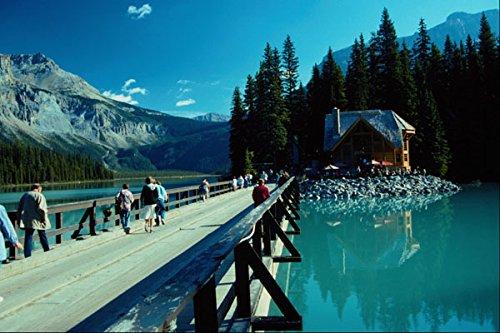 672038 Hiking The Boardwalk Jasper Park Alberta Canada A4 Photo Poster Print 10x8