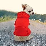 Idepet Haustier Kleidung Hundepullover Hunde Kleider welpen Pullover Hunde Warmer Mantel für Katzen Kleine Hunde Chihuahua Welpe Teddy Pudel (M, Rot)