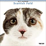 Calendrier mural 2019 Motif chat Scottish Fold