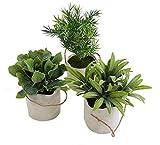 Spetebo Deko Kunstpflanze mit Tragetasche klein - 3er Set - Tisch Deko Pflanze künstlich Kunstblume grün - 3