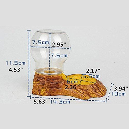 LanLan Dispensador de Agua llenado automático, dispensador de Mascotas como Reptiles, Retro Style Reptile Waterer