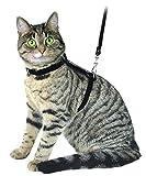 Arnés para gatos con correa 120cm, rojo, de ante