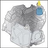Hazet Ölfilter-Schlüssel für DSG-Getriebeölwechsel, 2169-24 für Hazet Ölfilter-Schlüssel für DSG-Getriebeölwechsel, 2169-24