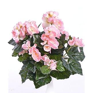 artplants.de Begonia Artificial Lamia, 70 Flores, Rosa, 30cm – Flor de azúcar – Flor sintética