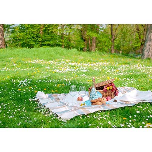 YongFoto 3x2m Vinyl Foto Hintergrund Wilde Blumen Gras Picknickdecke Korb Früchte Wein Sommer Fotografie Hintergrund Partydekoration Video Fotostudio Hintergründe Fotoshooting