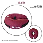 iCollr – The Inflatable Pet Collar for Cats and Dogs in Post Surgery Recovery - MEDIUM + 7