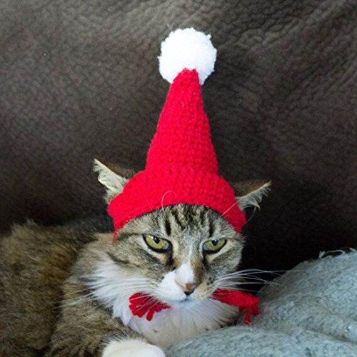 Schnappy Weiche, handgefertigte Häkelmütze für kleine Katzen, Hunde, M, rot/weiß