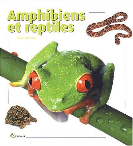 Amphibiens et reptiles par David Alberton