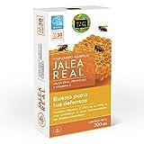 Pappa reale con propoli per aumentare l'energia e la vitalità - Pappa con propoli e vitamina C per rafforzare il nostro sistema immunitario - 30 filiale
