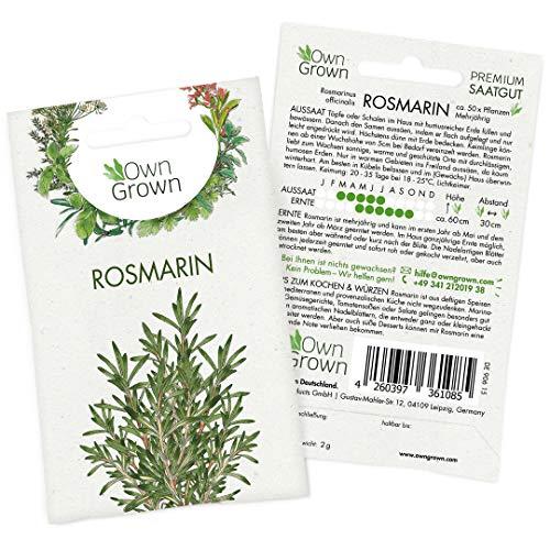 OwnGrown Premium Rosmarin Samen mehrjährig (Rosmarinus officinalis), Rosmarinsamen winterhart, Saatgut für rund 50 Rosmarin Pflanzen