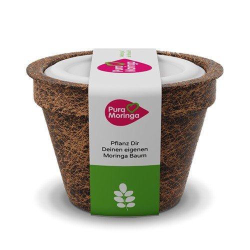 Moringa Samen Pflanzset von Pura Planta zur Anzucht eines Moringa Baum - Moringa oleifera Samen für deinen Moringabaum - Anzuchtset mit Moringa Samen, Topf, Pflanzerde, Bio-Dünger & Pflanzanleitung |- bio-zertifiziertes Baum Geschenk
