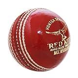 Diseño de pelota de críquet-PREMIUM rojo piel-Pelotas de...