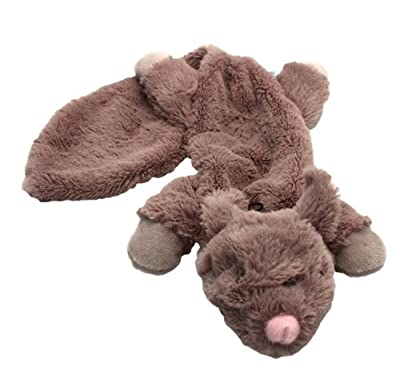 Happy Pet Unstuffed Chipmunk Character Soft Dog Toy