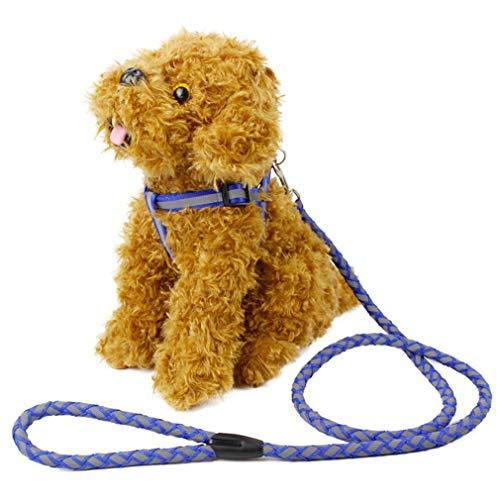 LQ-petsheng Hundeleine Reflektierende Leine Lange Polyester Training Hundeleine Für Pet Tracking Ausbildung Brustgurt Hundeleine Blei Blau (Size : M)