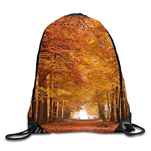 uykjuykj Tunnelzug Rucksäcke, Forest Boulevard Print Drawstring Backpack Rucksack Shoulder Bags Gymsack Sackpack Forest boulevard8 Lightweight Unique 17x14 IN